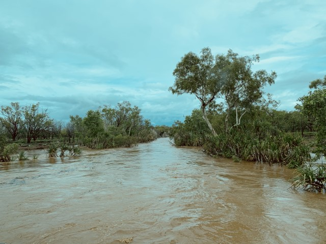 The Victoria River flowing strong with the Wet Season rains